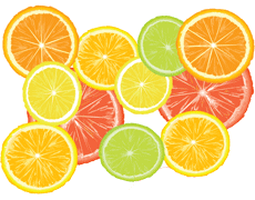 picture of brightly colored citrus fruit slices